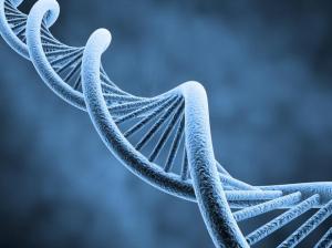 carlosesteves_genetica1