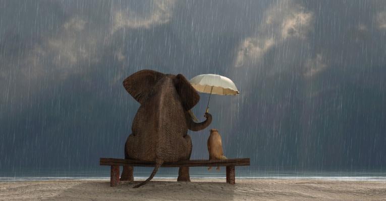 Generosidade: deve haver um equilíbrio entre os comportamentos altruístas (pensar no outro) e egoístas (pensar em si).